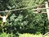 20110809_zoo-de-lille_011